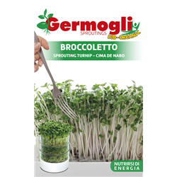 GERMOGLI BROCCOLETTO