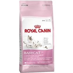babycat 34 royal canin