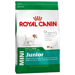 mini junior Royal canin