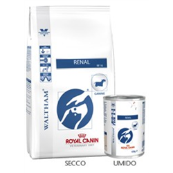 renal Royal canin