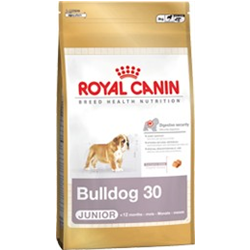 Bulldog 30 Junior Royal canin