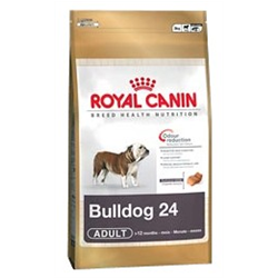 Bulldog 24 Adult Royal canin