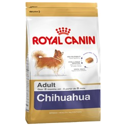 Chihuahua Adult Royal canin