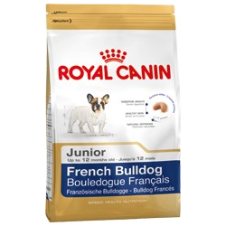French Bulldog Junior Royal canin