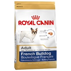 French Bulldog Adult Royal canin