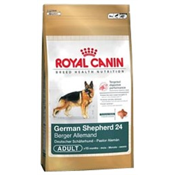 German Shepherd 24 Adult Royal canin