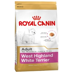 West Highland White Terrier Adult Royal canin